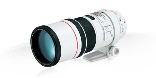 -Canon EF 300mm f/4.0 L IS USM